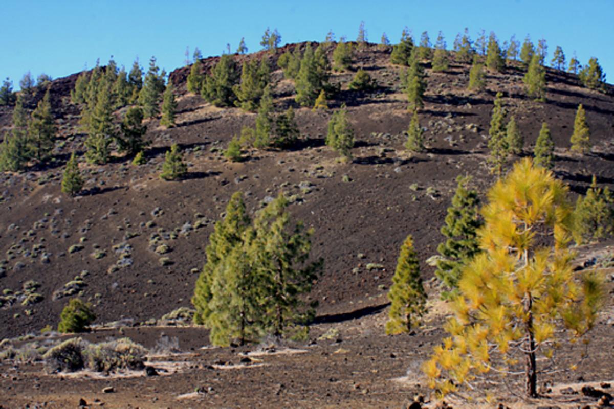 The scenery of the Samara Volcano