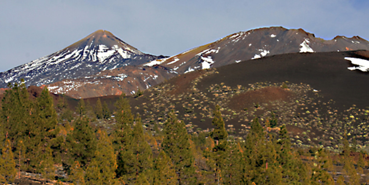 The western approach to the park along TF-38, and from left to right beyond the last of the Canary Island Pines, we see three very different volcanic structures - Mount Teide, Pico Viejo and the black cinder cone of Volcan de la Botiga