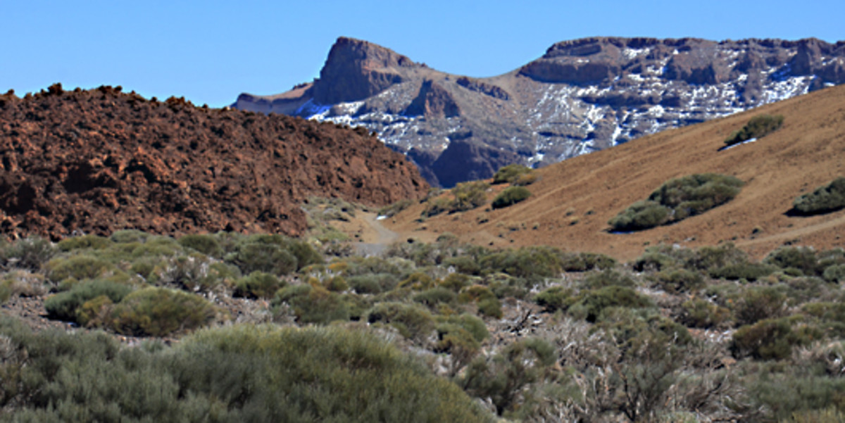 The scenery close to the lower cable car station. Topo de la Grieta is the peak in the background. Note the lava flow on the left - reddish due to oxidation processes