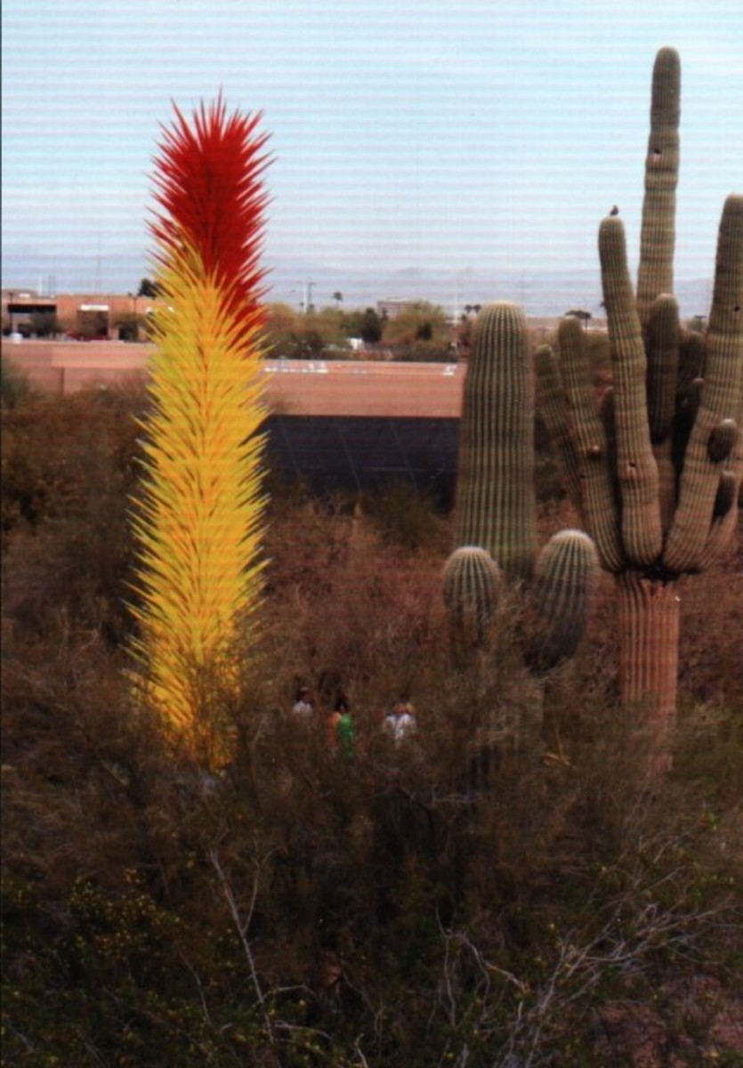 Saguaros, Chihuly glass, and gazing people