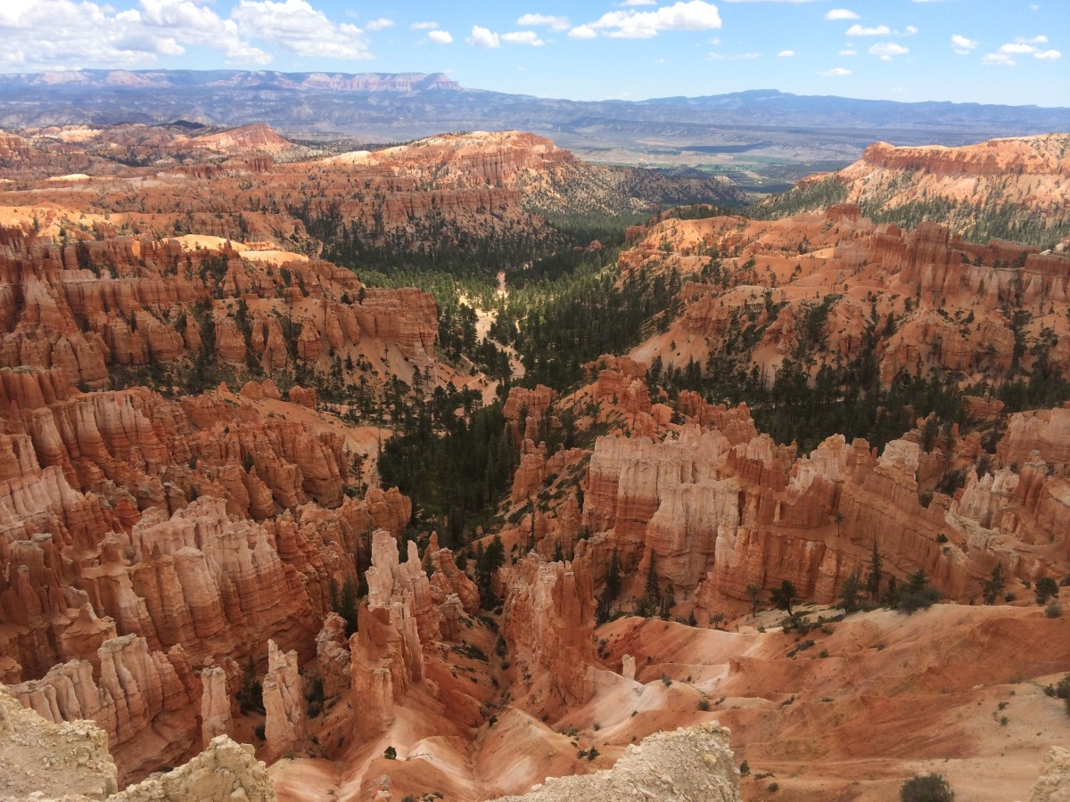 A view from a different look-out point, looking straight down a canyon filled with the hoodoos for which Bryce Canyon is known