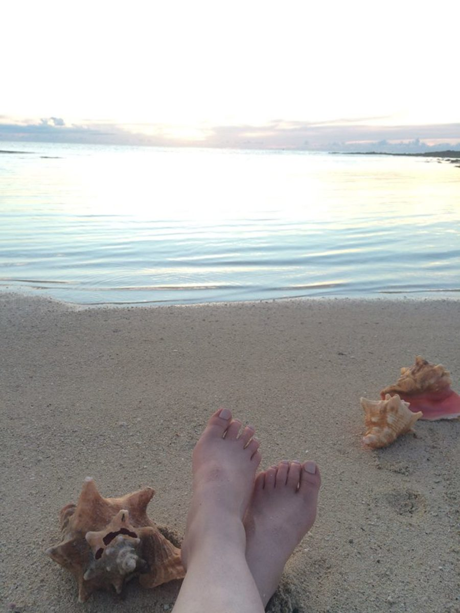 Preparing for a sunset on the beach with conch shells - Cable Beach, Bahamas