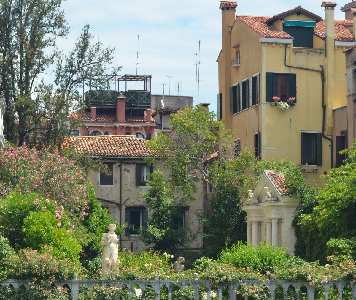 A hidden garden in Venice (c) A. Harrison