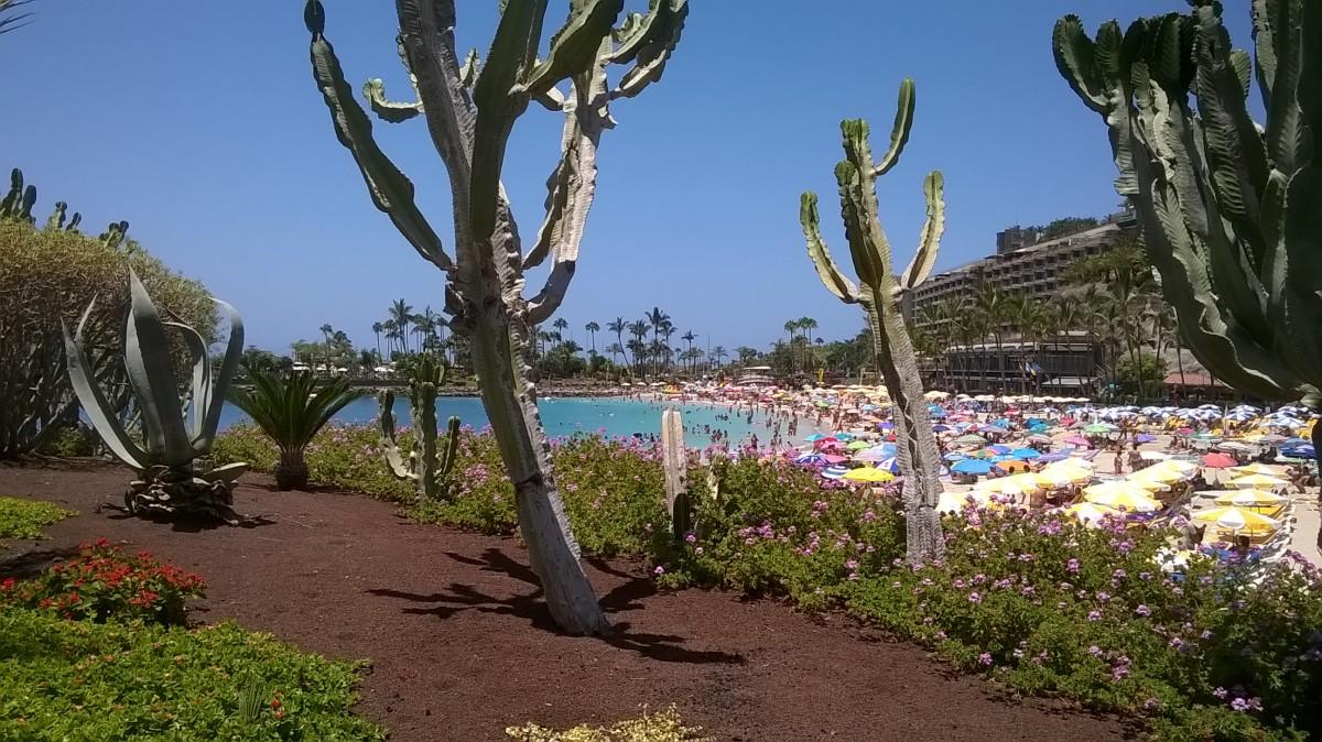 Beach scene at Gran Canaria