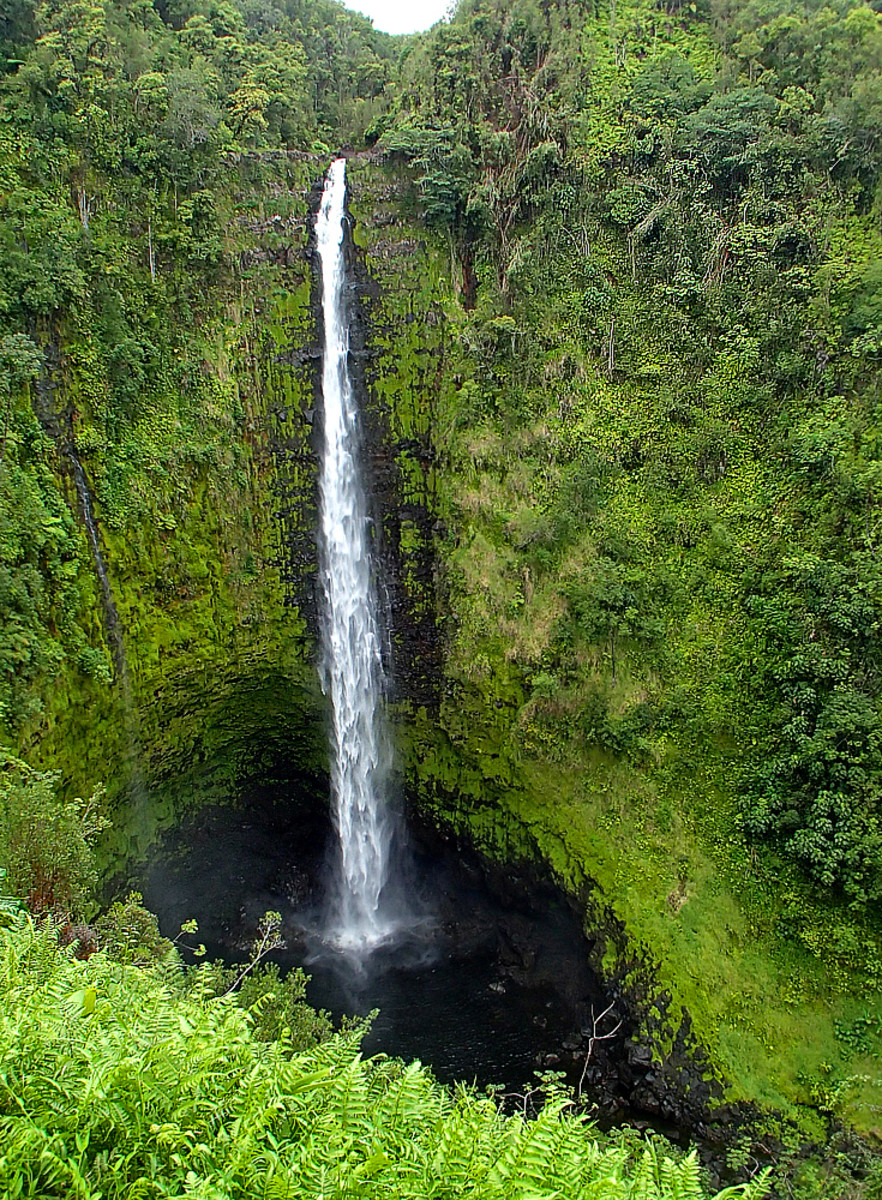 Akaka Falls are a must-see on the Big Island.