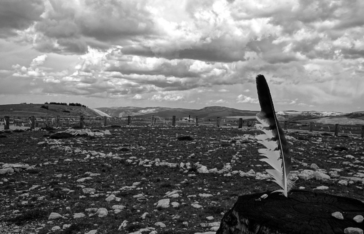 My favorite photo of the medicine wheel. It's hauntingly beautiful with a feather in the foreground.