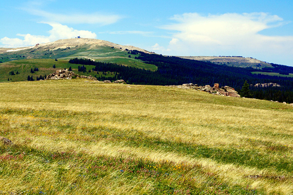 """The view from the """"point of interest"""" just east of Medicine Mountain. You can see the observatory."""