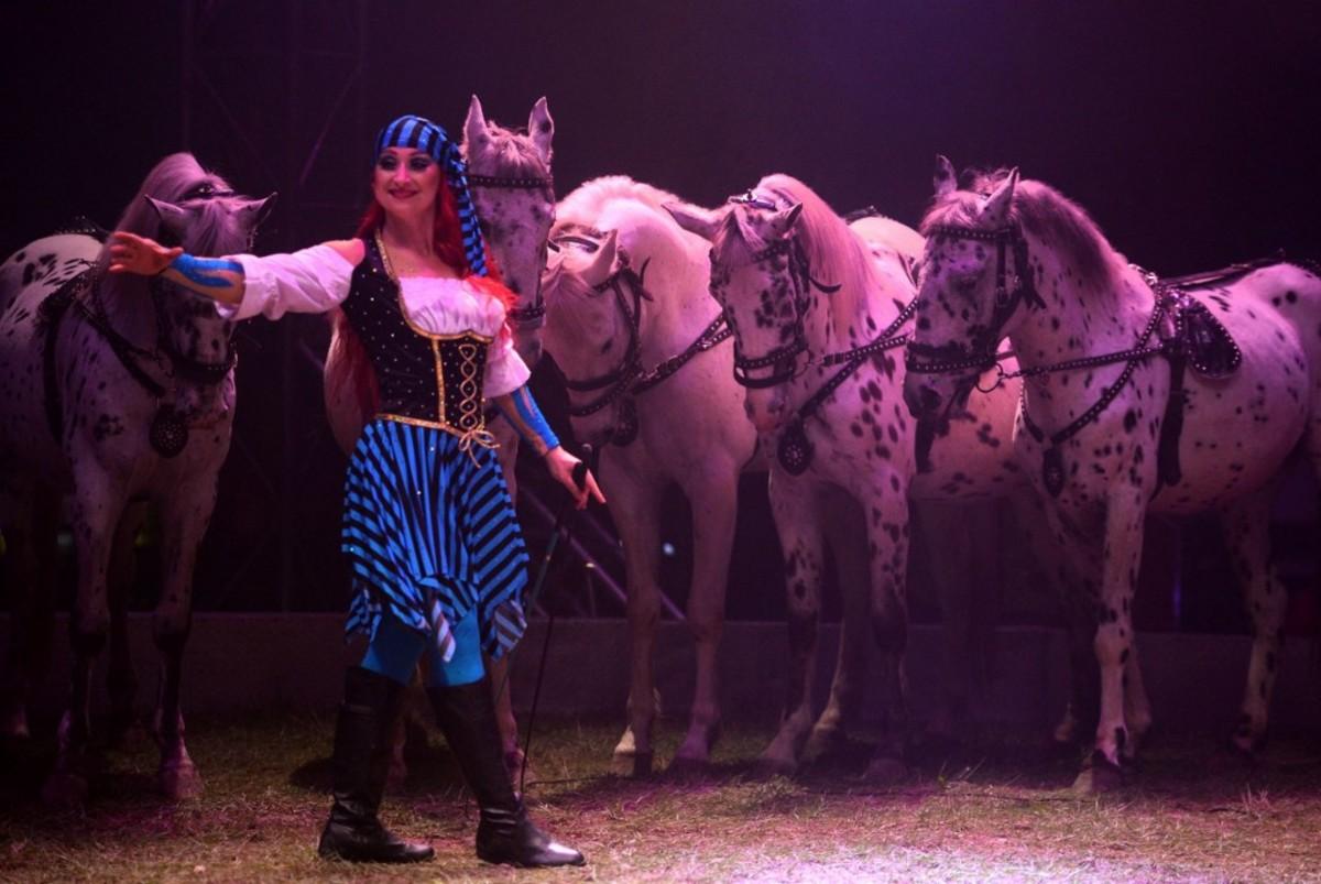 Liberty Horses!
