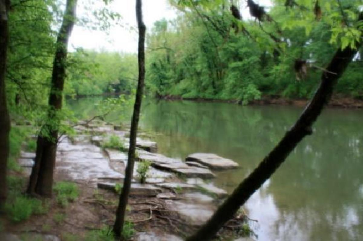 The Duck River runs through Henry Horton State Park