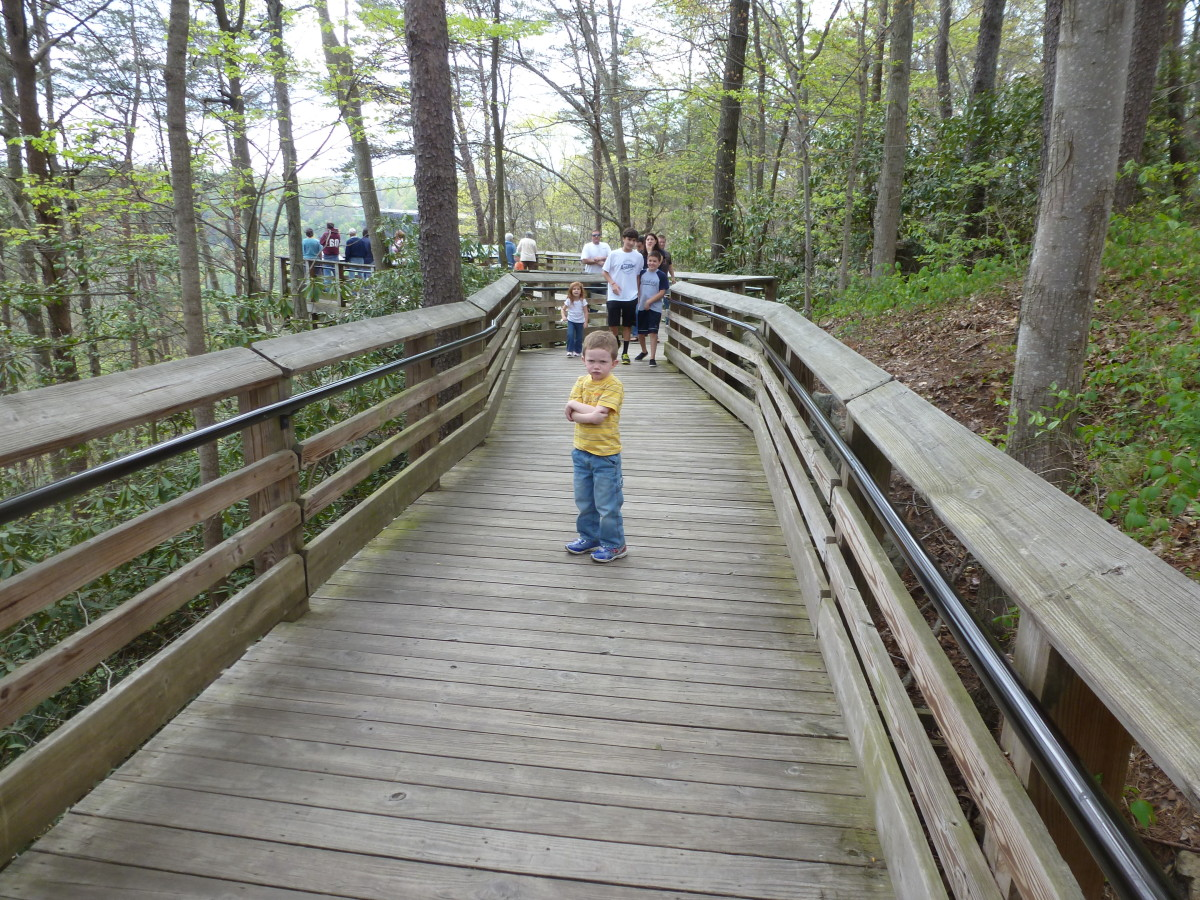 The Canyon Rim Boardwalk offers an easy hike with views of the gorge, bridge, and full accessibility.