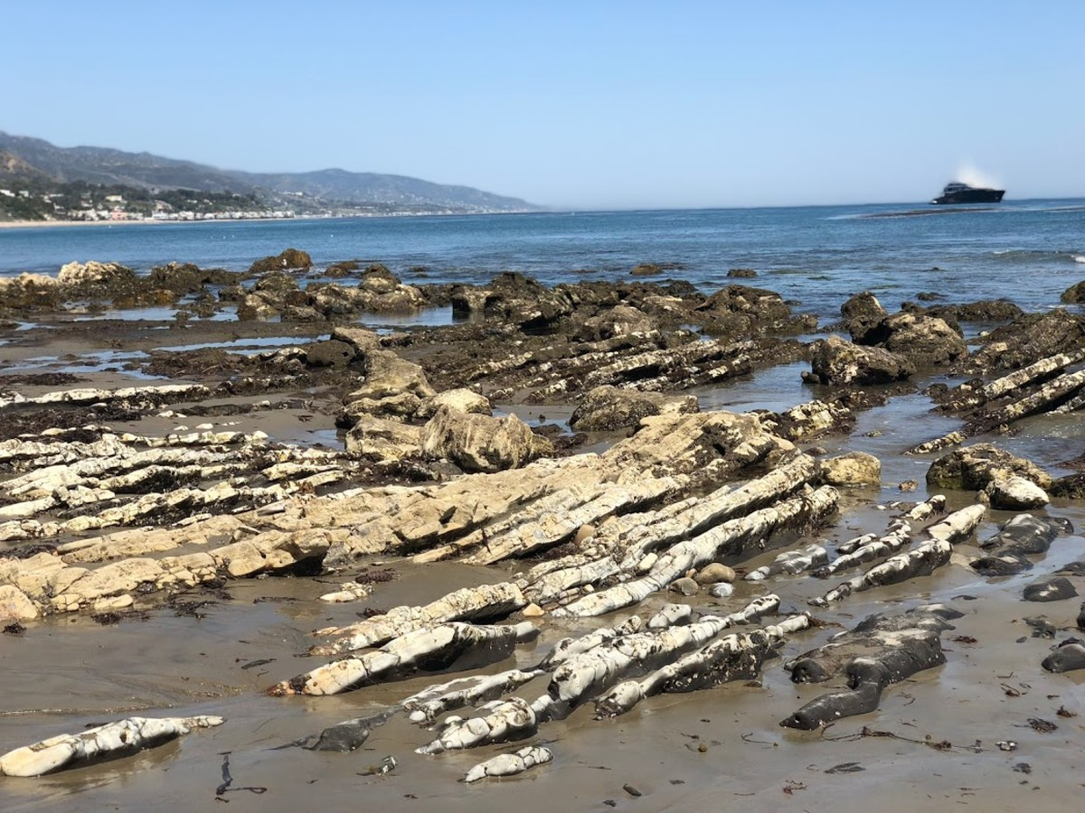 Exposed rocks during low tide