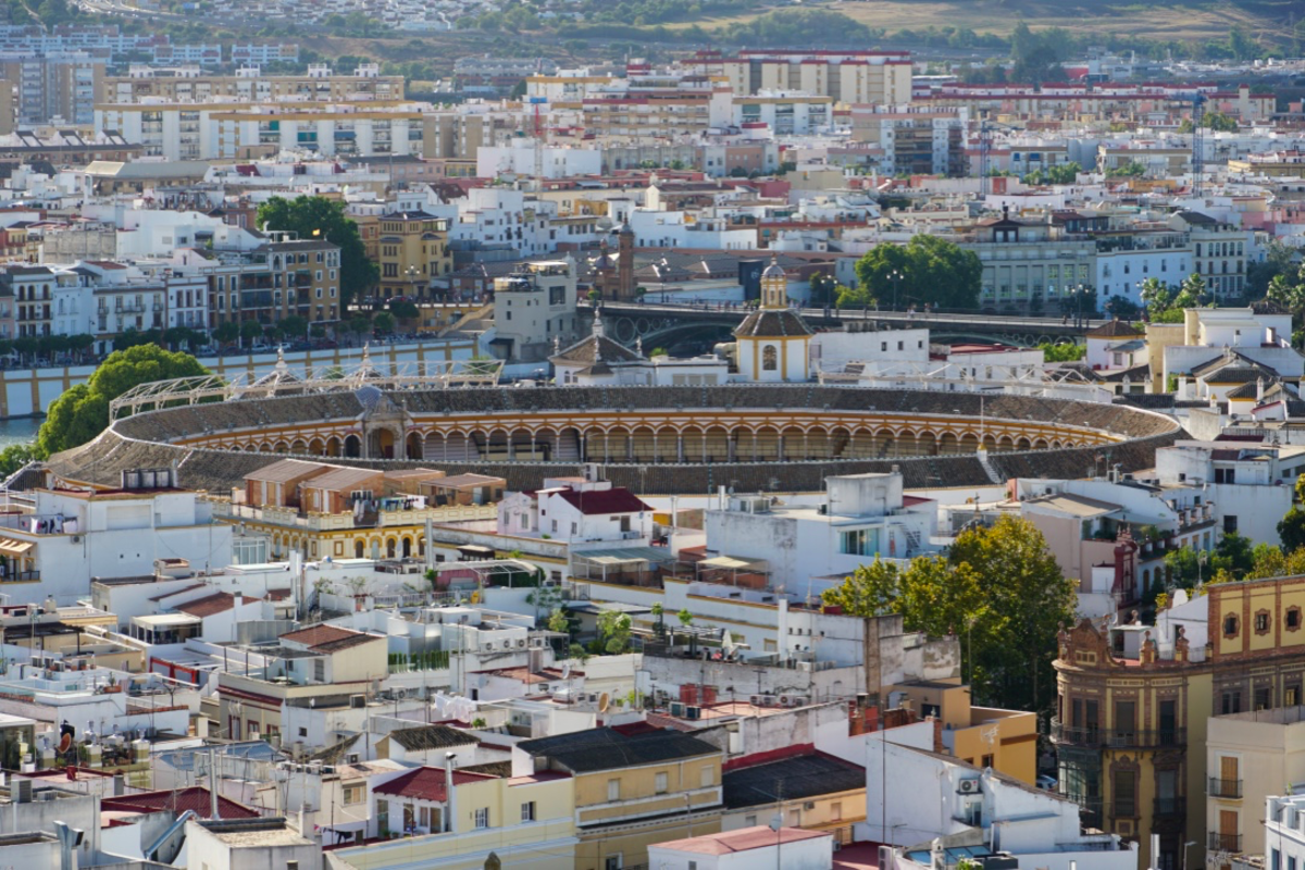 The Seville bull ring from the top of the Giralda Tower.
