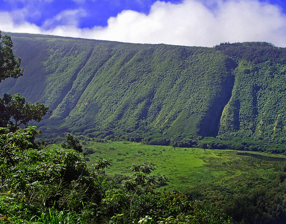Lush landscape of Waipi'o Valley.