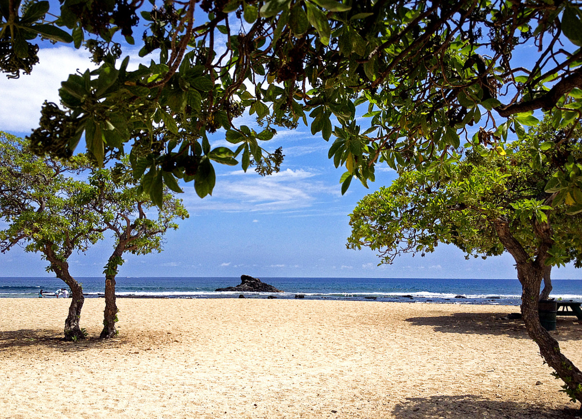 Beach trees offer cool shelters from the sun at Old Kona Airport Beach.
