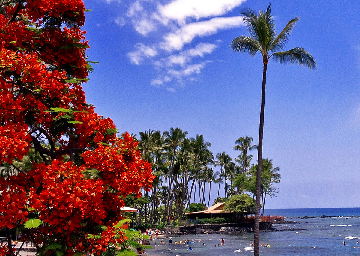 Kahalu'u Beach Park is best known for snorkeling.