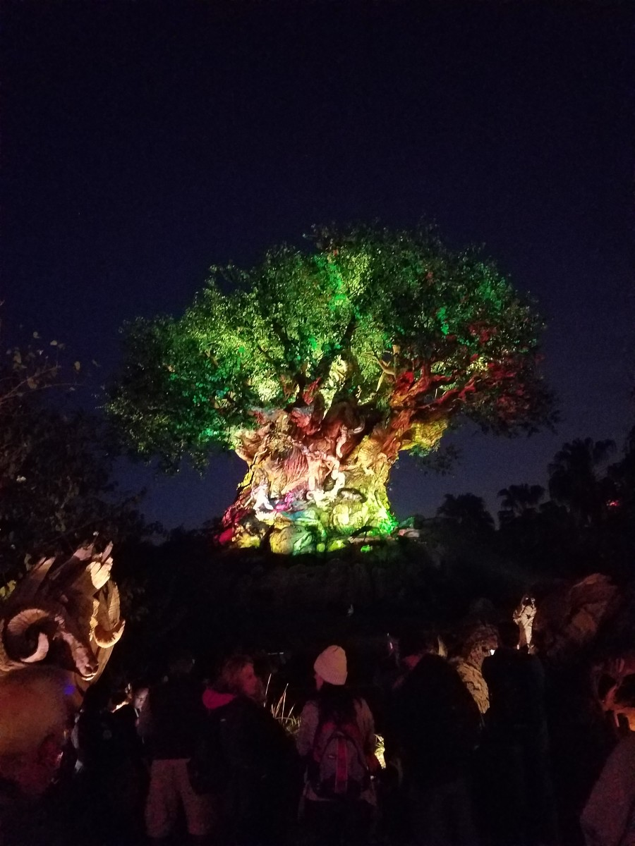 Tree of Life-Final Light Show