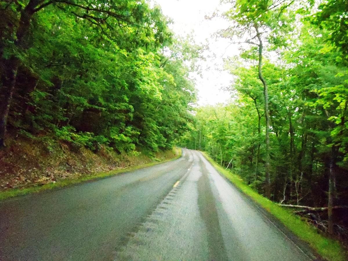 Covered Drive  - Keweenaw Peninsula between Delaware and Copper Harbor