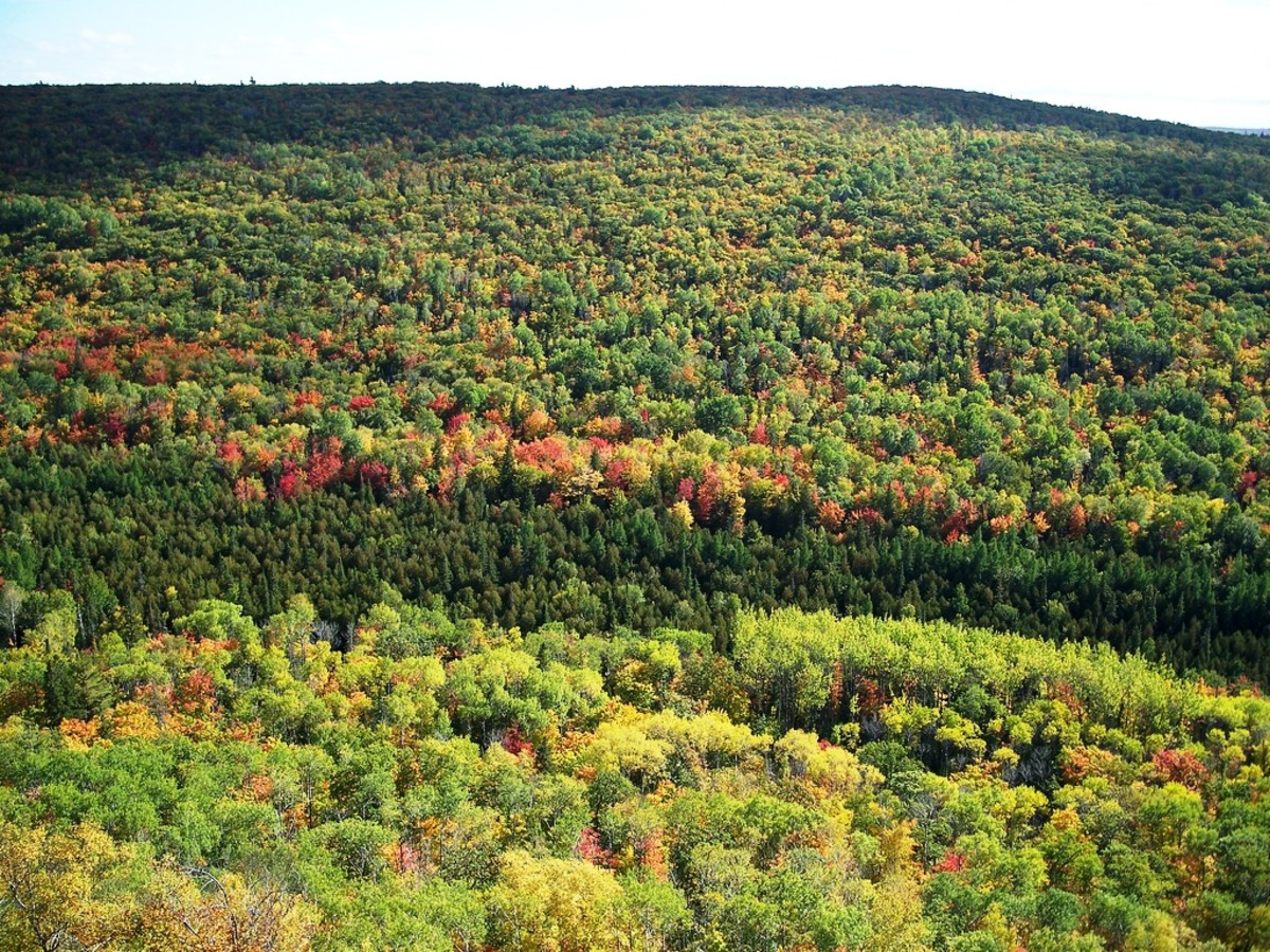 View from Brockway Mountain as the leaves start to change
