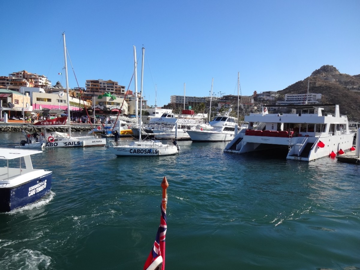 Excursion boats and tender transports at Cabo Port