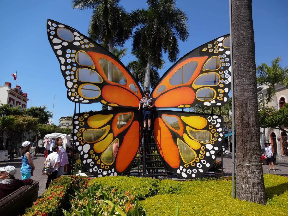 Butterfly in Machado Square. Speedy tagged along for a photo climbing a rickety stairway with no handrail.
