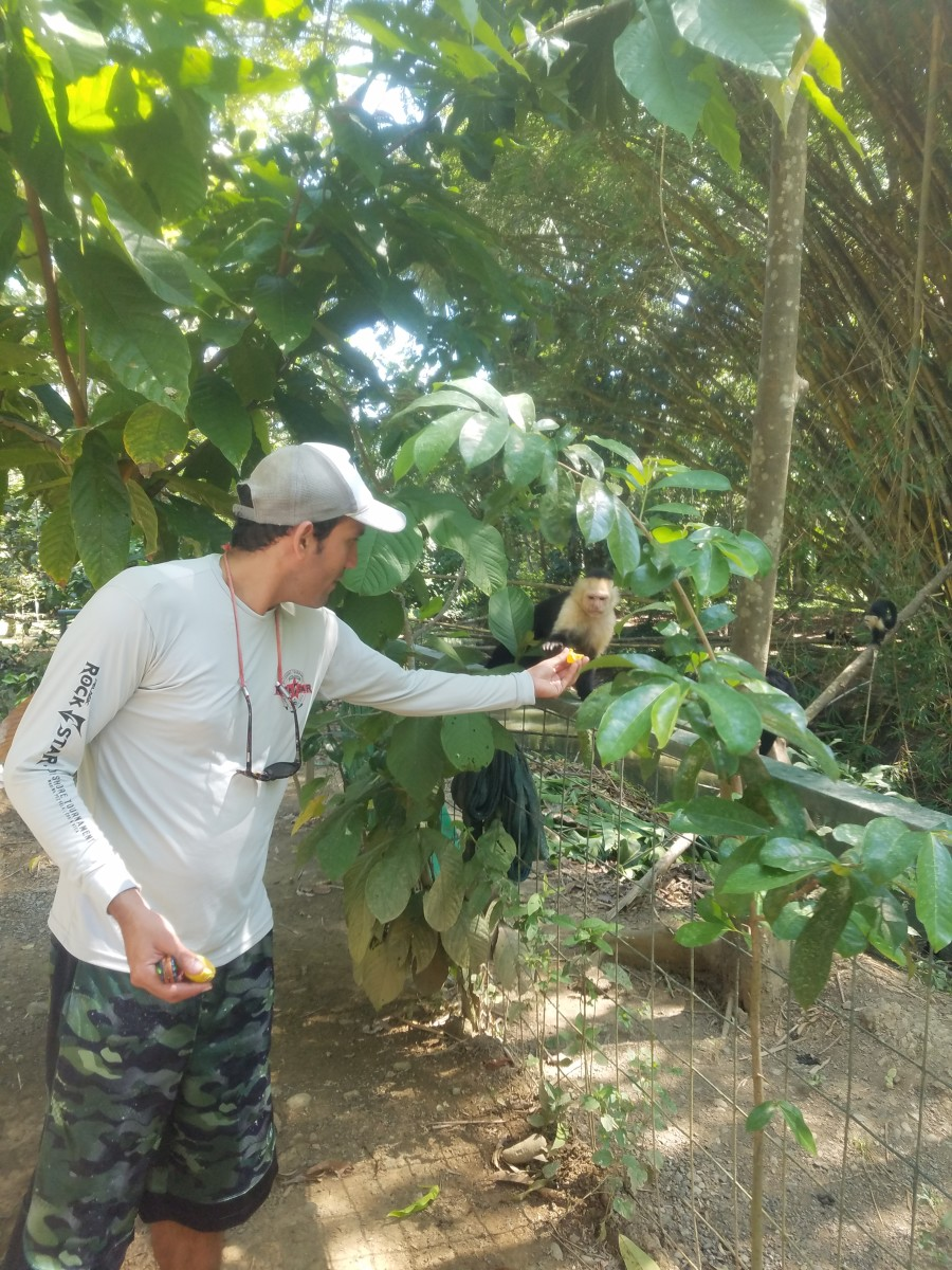 Our Guide Feeding The Monkeys