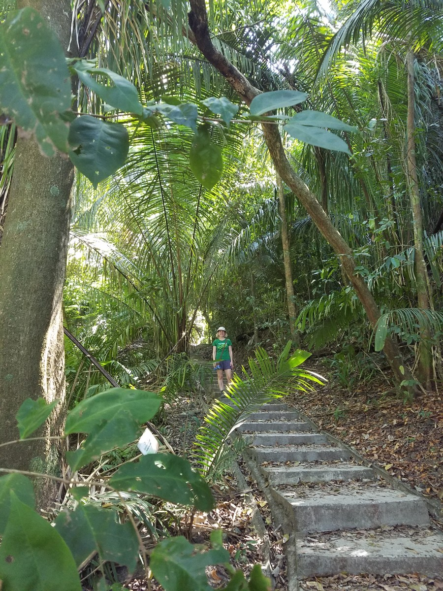 Hiking In Manuel Antonio National Park