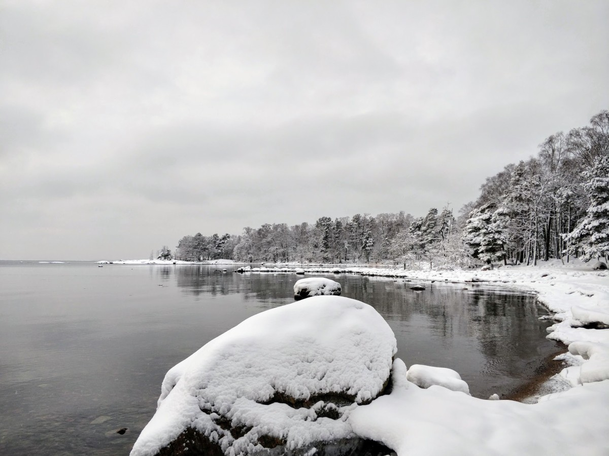 Lauttasaari Park in Winter