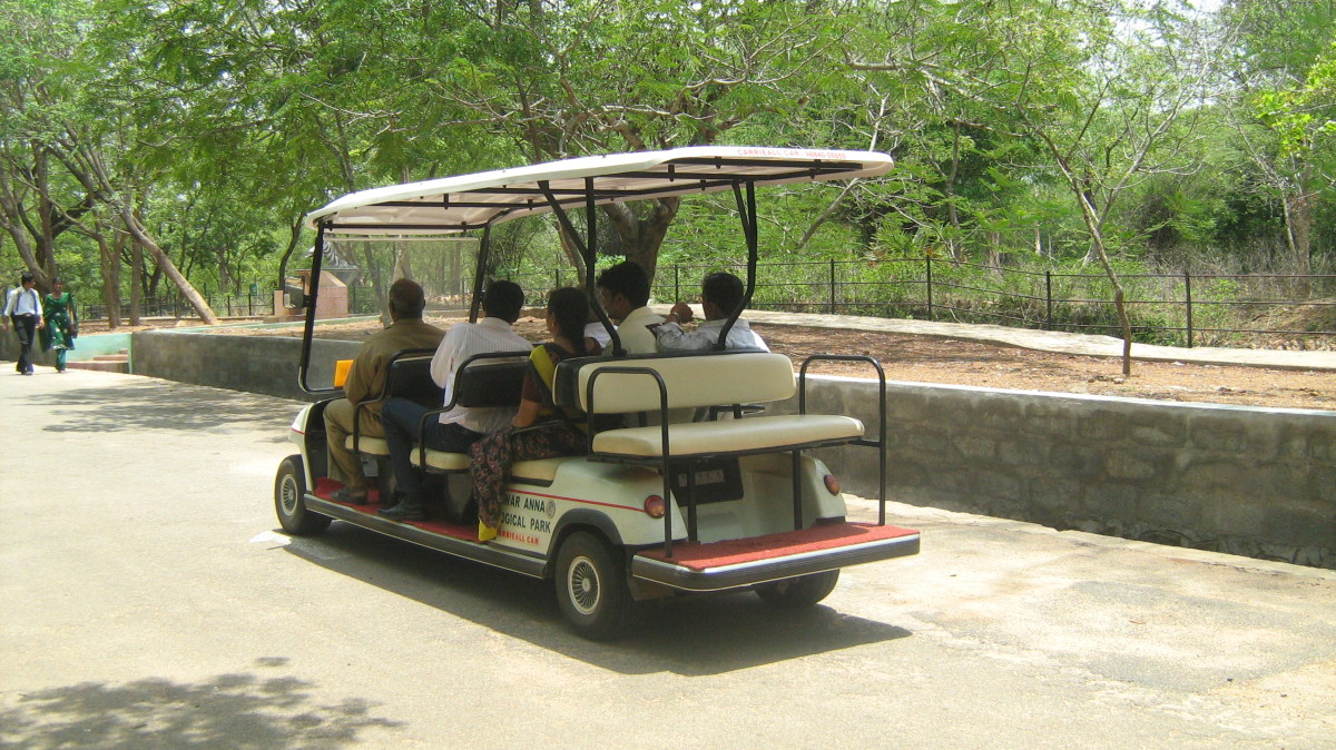 Electric car ferrying tourists around the zoo