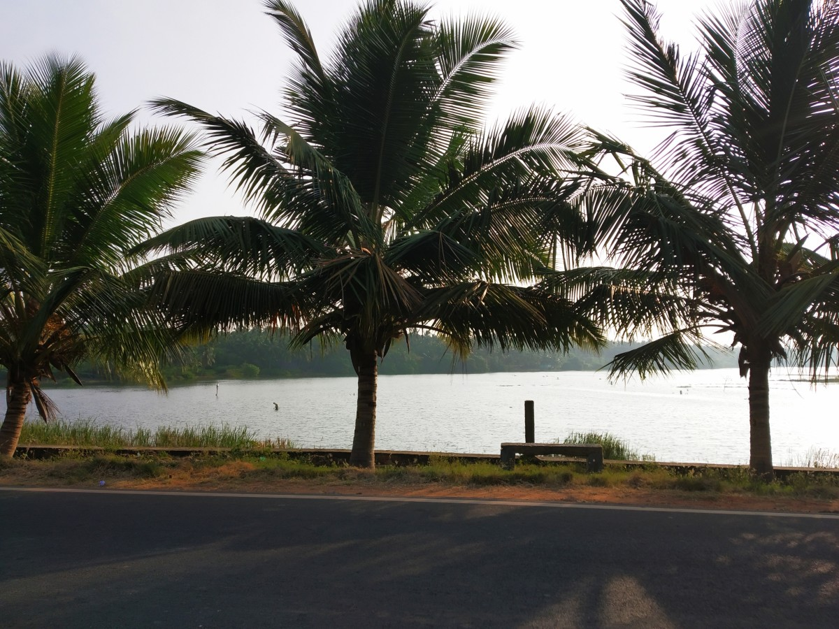 The countryside around Nagercoil