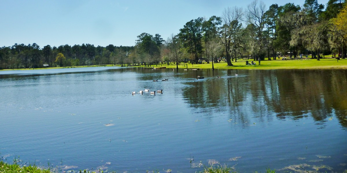 The lake in Burroughs Park