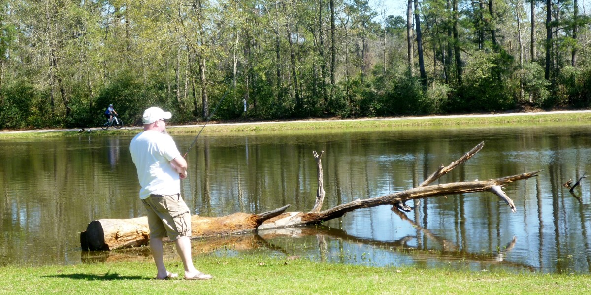 Another fisherman in Burroughs Park