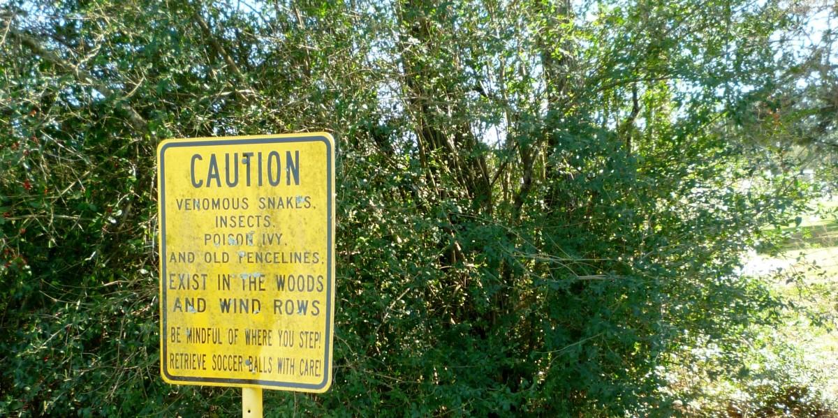 Warning sign regarding snakes
