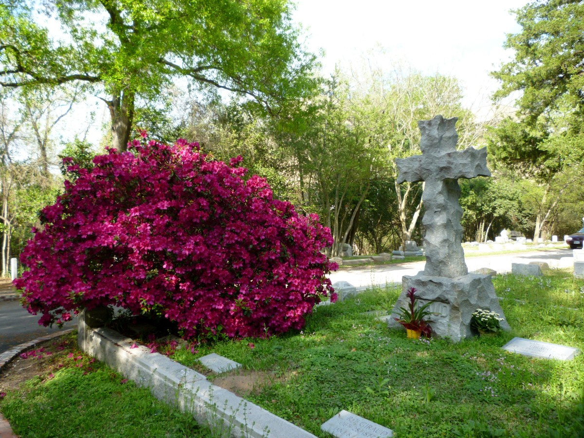 Glenwood Cemetery with Azaleas in Bloom