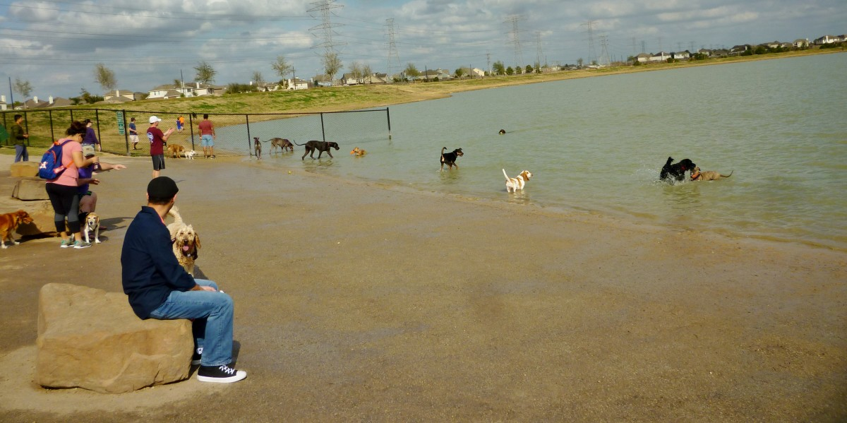 People enjoying the dog park in Goforth Park