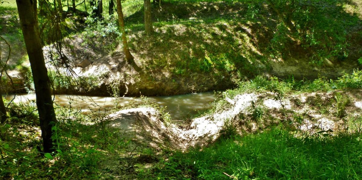 Cypress Creek view