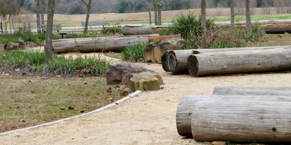 Logs for seating near the outdoor classroom
