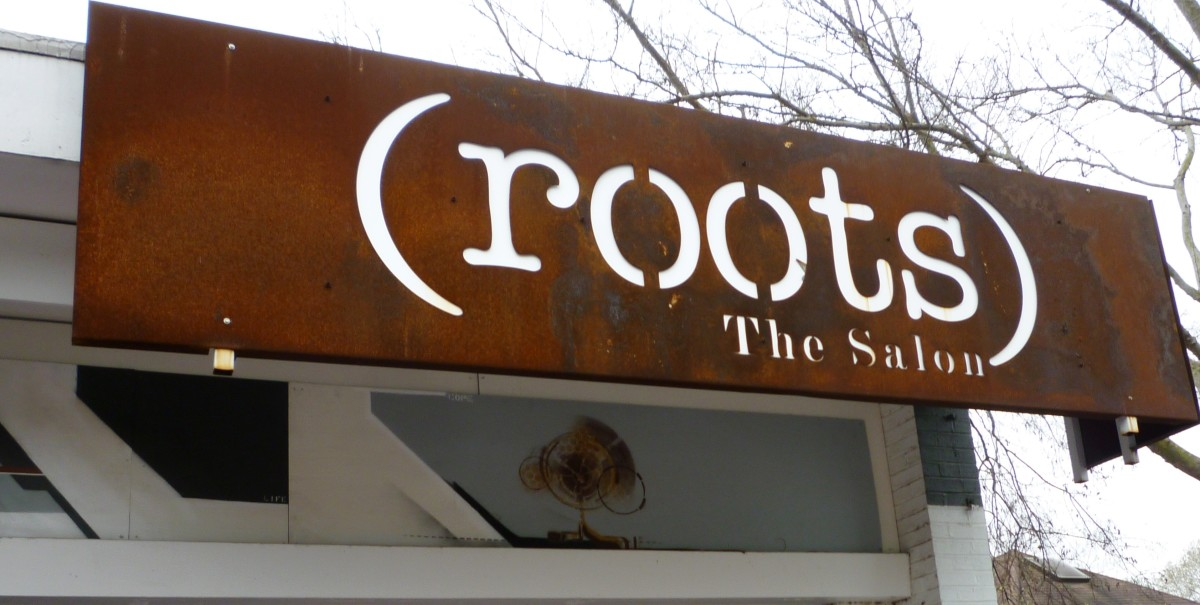 (roots) The Salon Sign