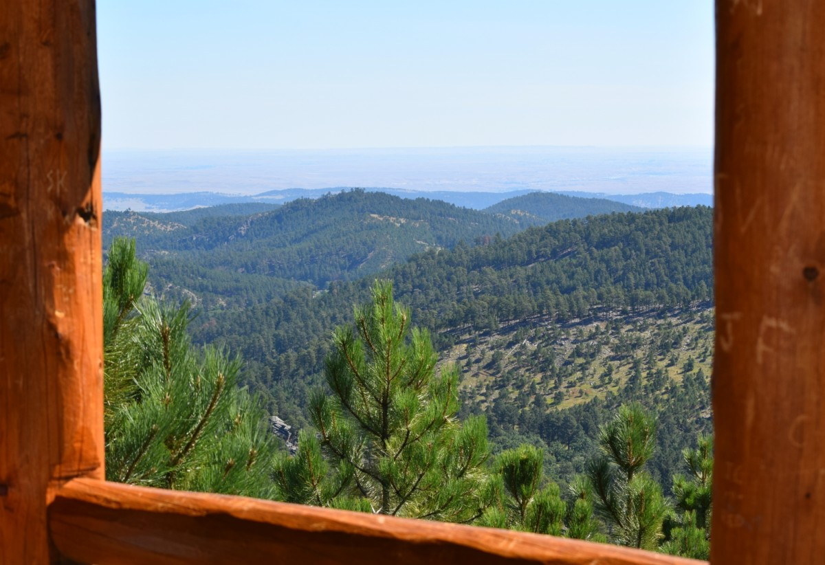 Heddy Draw Overlook in Custer State Park