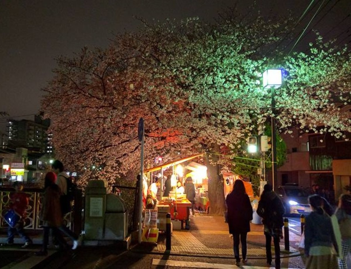 A cherry blossom festival in Tokyo.