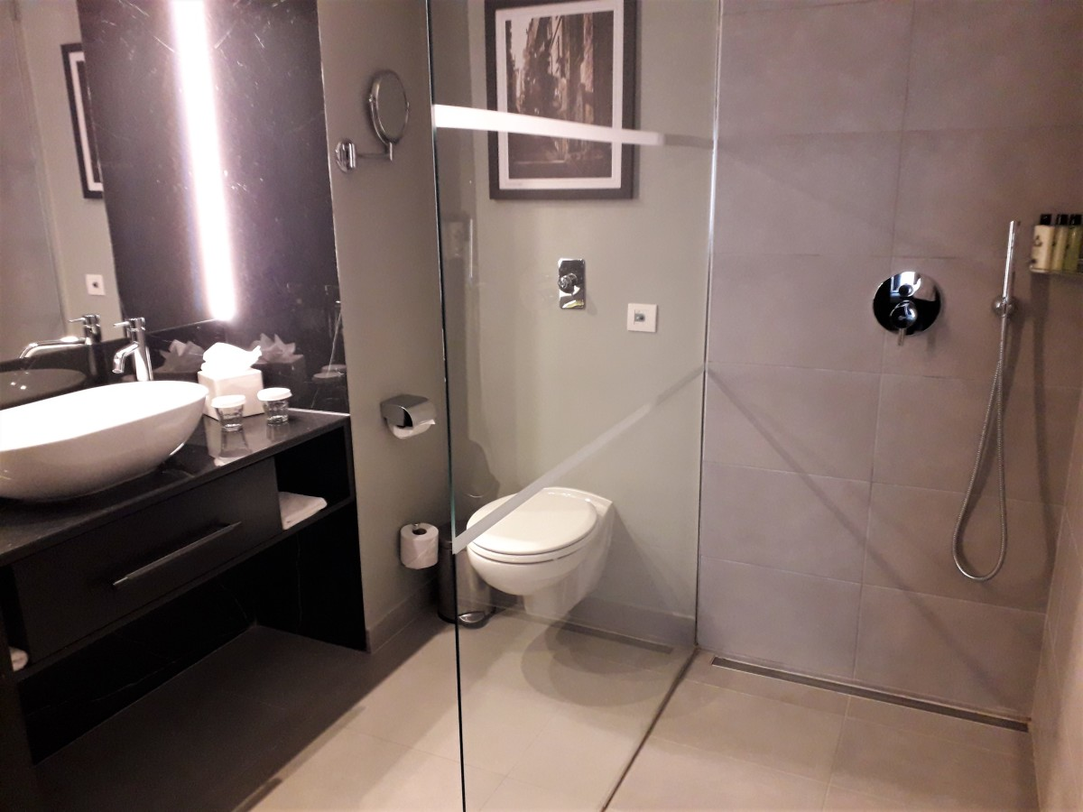 Sink, WC and walk in shower.