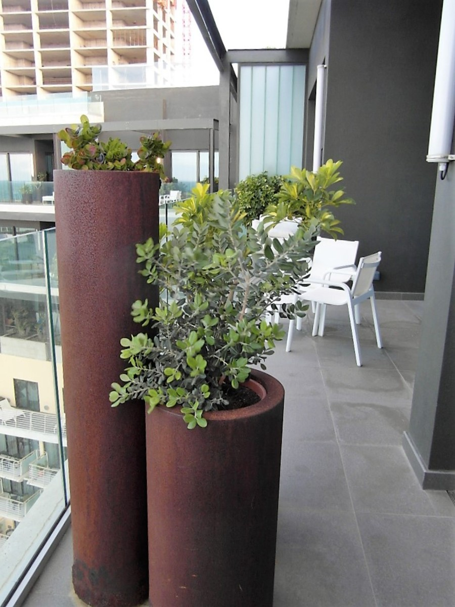 Rusty plant pots or design feature?