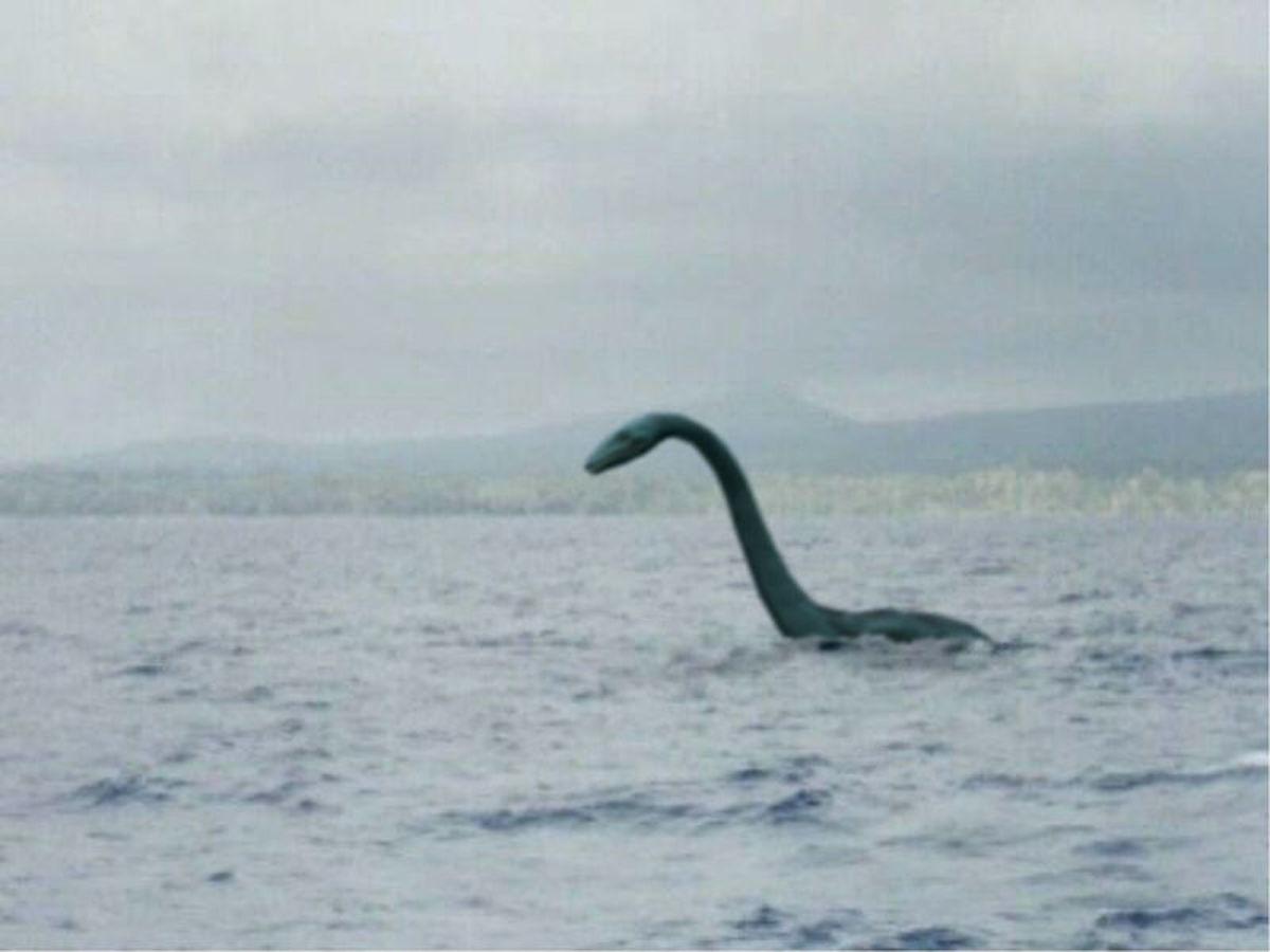 the-lake-norman-monster