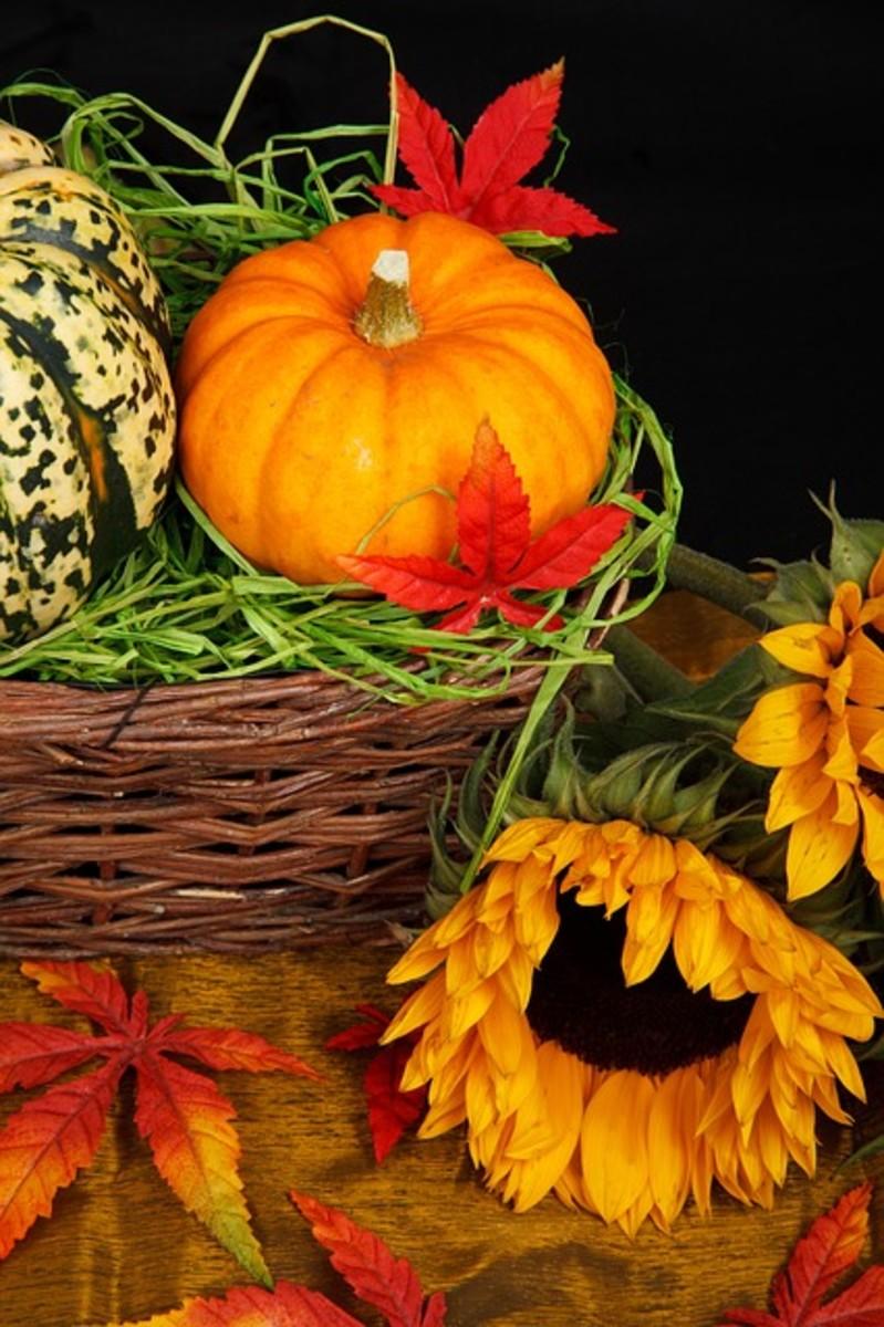 Samhain is the last of 3 harvest festivals.