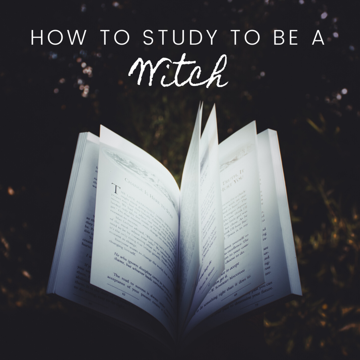 How to Study to Be a Witch