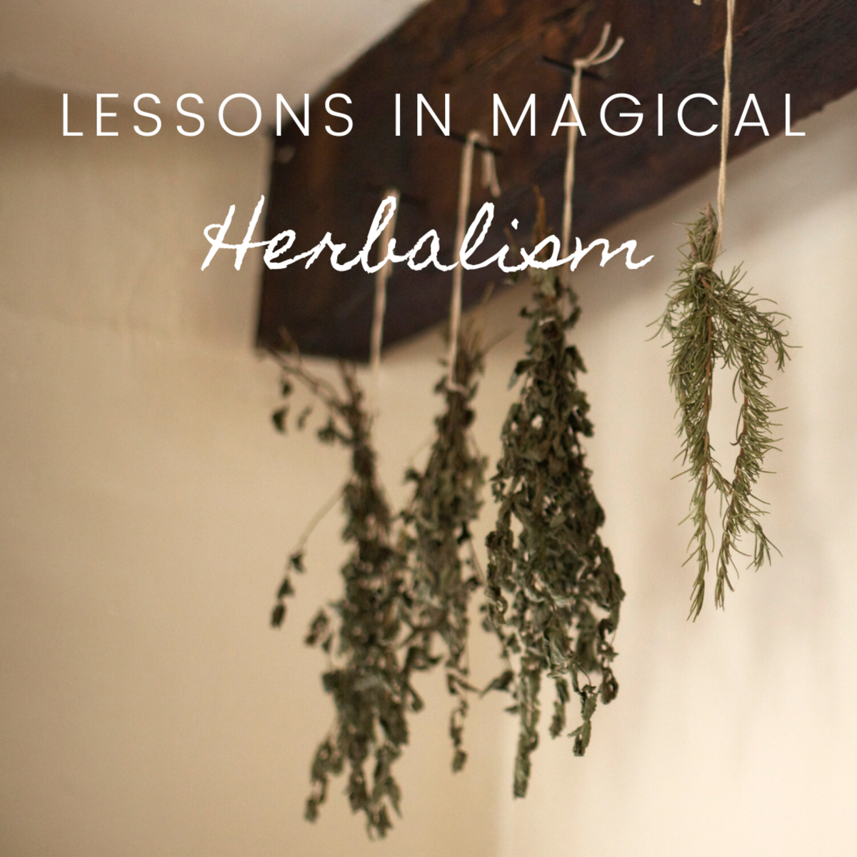 Lessons in Magical Herbalism