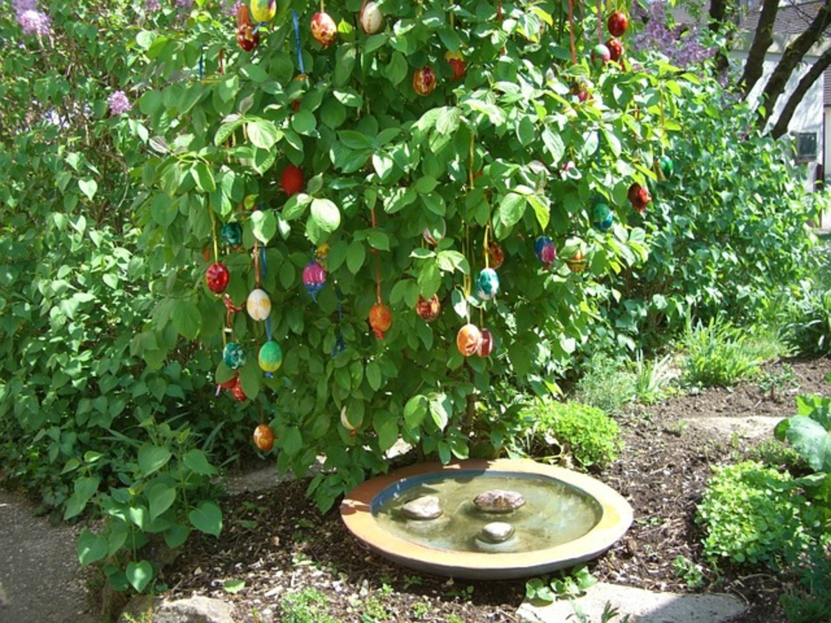 Blow out the eggs shells and turn them into pretty outdoor spring decorations.
