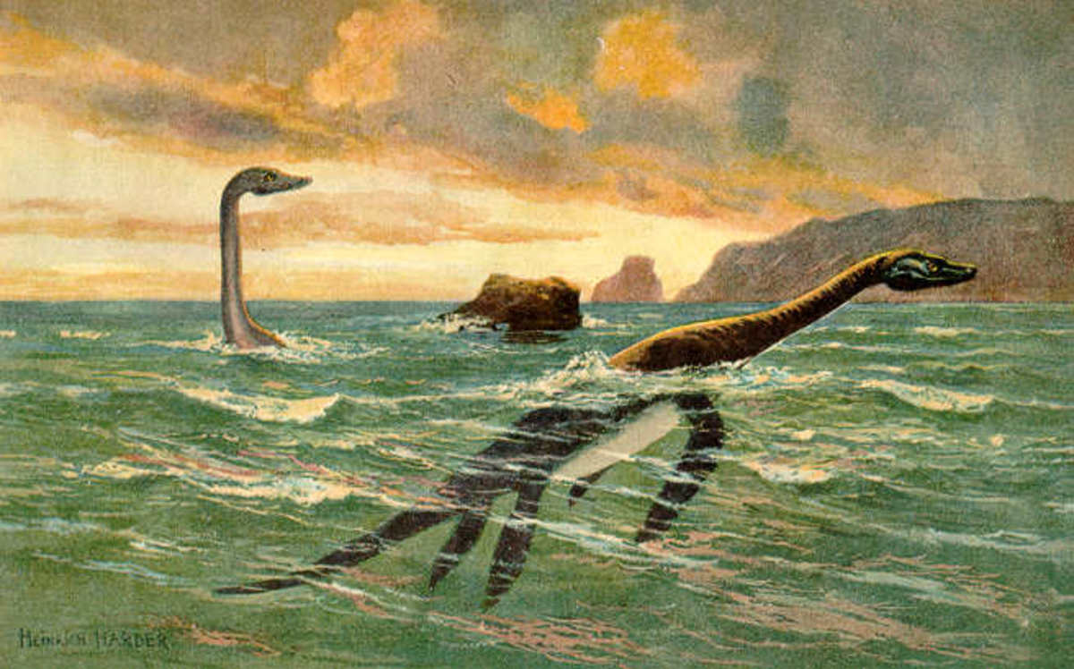Bessie could be a creature similar to a plesiosaur that somehow found it's way into the Great Lakes.