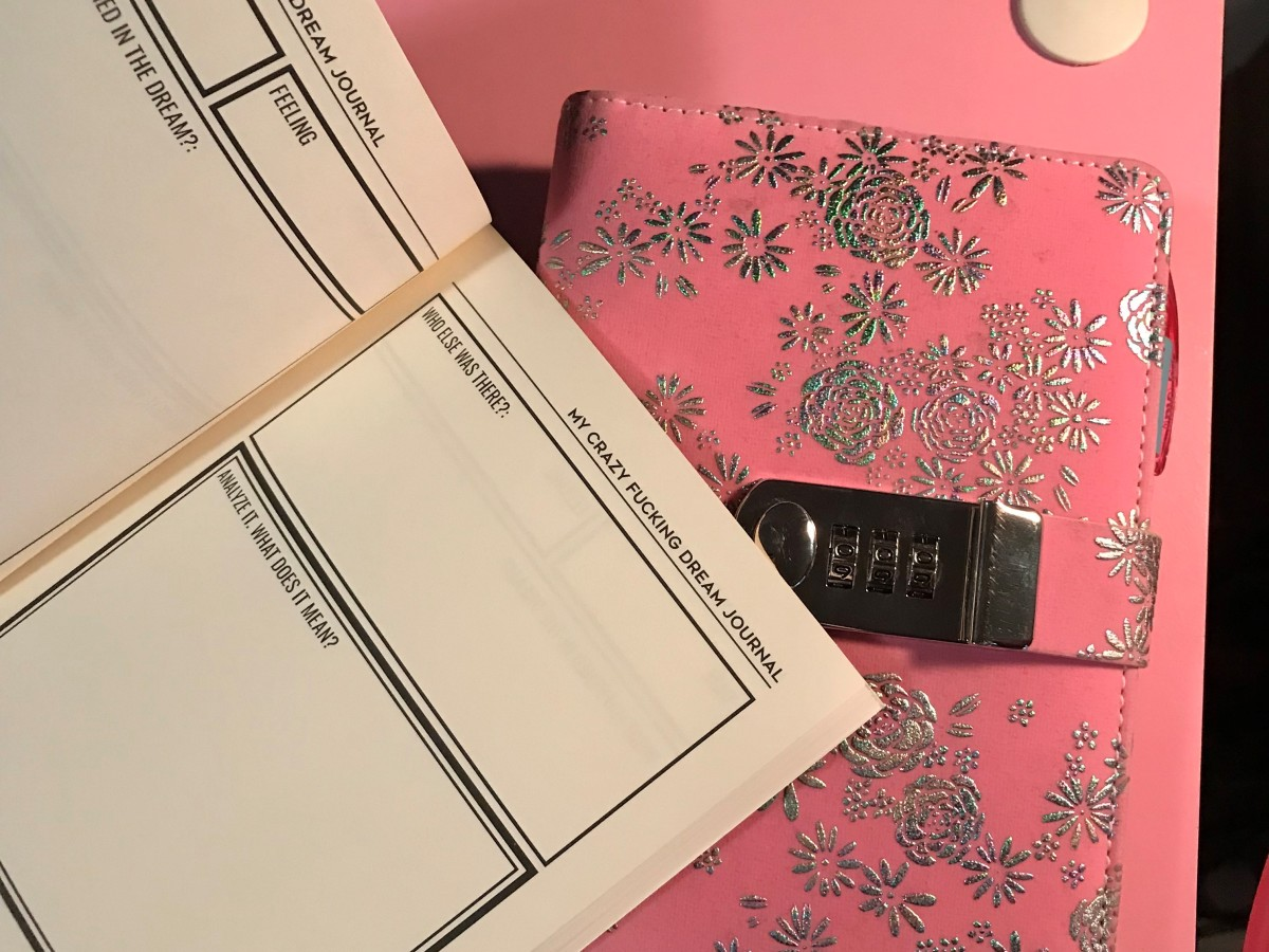 An example of a pre-made dream journal and a refillable journal with a privacy lock.