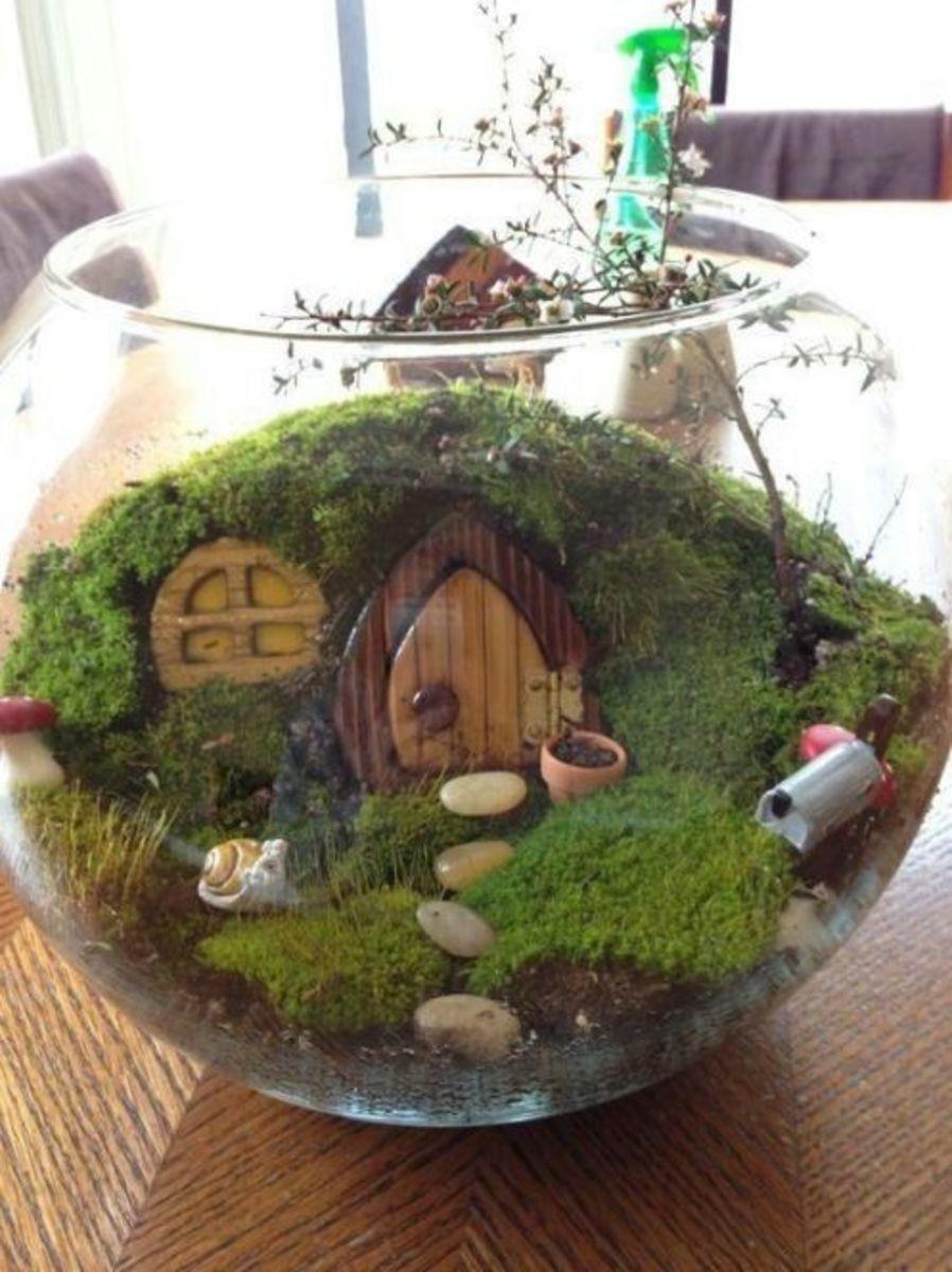Faerie terrarium