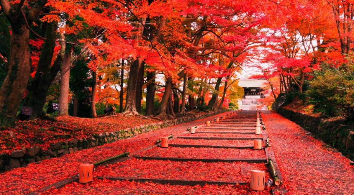 the-superstitions-of-japan